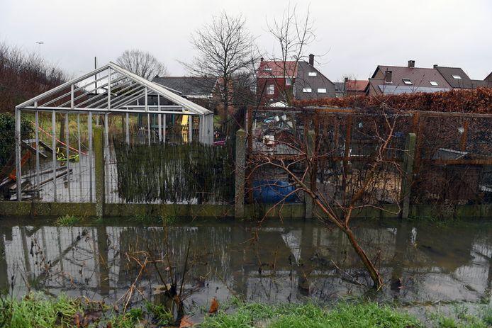 De beek naast de E314 is verstopt met hakselhout, waardoor de tuin (ook die van de buren op foto) van Gerry Vandenberghen al twee jaar onder water staat.