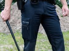 25-jarige man mishandelt agenten bij inbraakpoging in Zuidzande