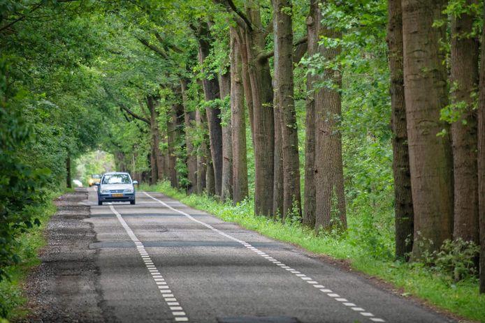 De Bergsebaan tussen Teteringen en Den Hout, hier in oude staat, kreeg vorig jaar een opknapbeurt. Als er een rondweg zou komen, moet de weg wéér op de schop.