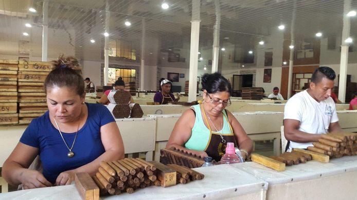 Sigaren rollen in Estelí, de zusterstad van Delft in Nicaragua.