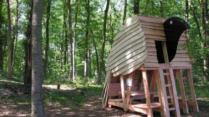 Airnbnb organiseert complete trips