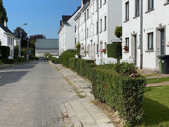 Het typische uitzicht van de wijk: witte huisjes met ligusterhaagjes aan de straat