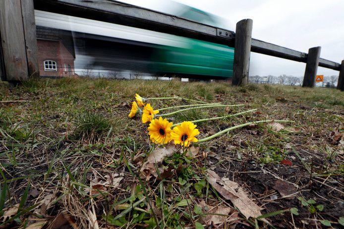 Vijf gele gerbera's herinneren aan de vijf Roemenen die op de N270 tussen Helmond en Deurne om het leven kwamen.
