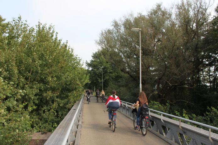 Een gedeelte van groen langs het Halvezolen fietspad in de Baardwijkse Overlaat dat de gemeenten willen kappen.