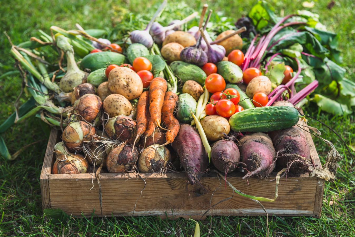 Nieuw onderzoek laat zien hoe goed biologisch eten is.