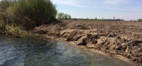 Boskalis beschuldigd van vernieling nesten bij het Bossche Engelermeer