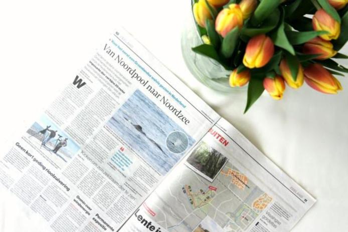 Krantenartikel over de Groenlandse Walvis.