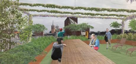 Wolvenhoek krijgt toch een daktuin: tien parkeerplaatsen voor 'groene oase'