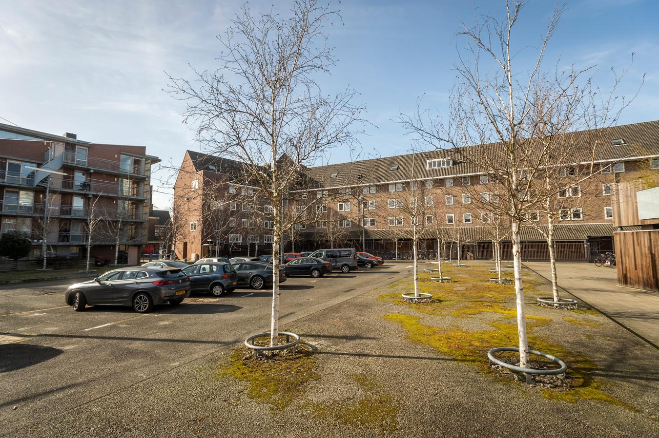 In april start de herinrichting van het Luciferplein in De Bergen. De berken op het plein worden begin volgende maand gekapt.