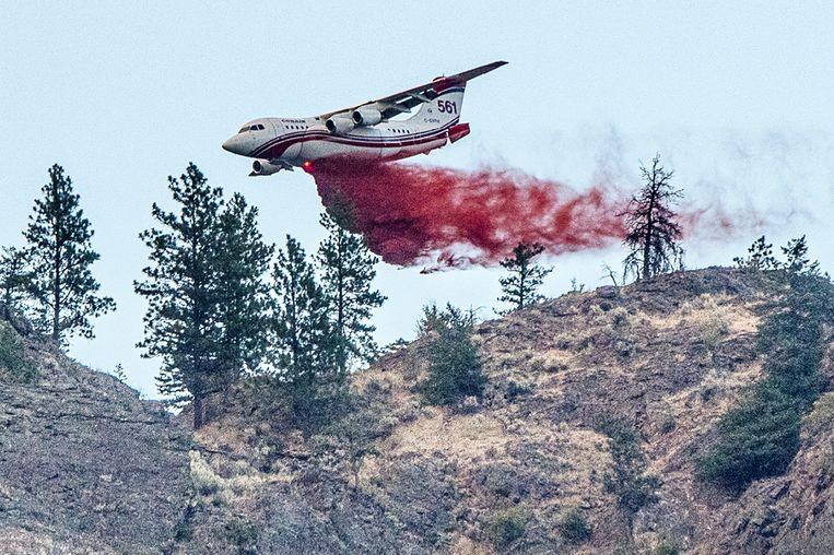 Een vliegtuigje dropt een brandvertragend middel in de buurt van Osoyoos, British Columbia.   Beeld via REUTERS