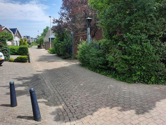 De Hogeweg, gezien vanaf de kruising met de Dillenburgstraat.