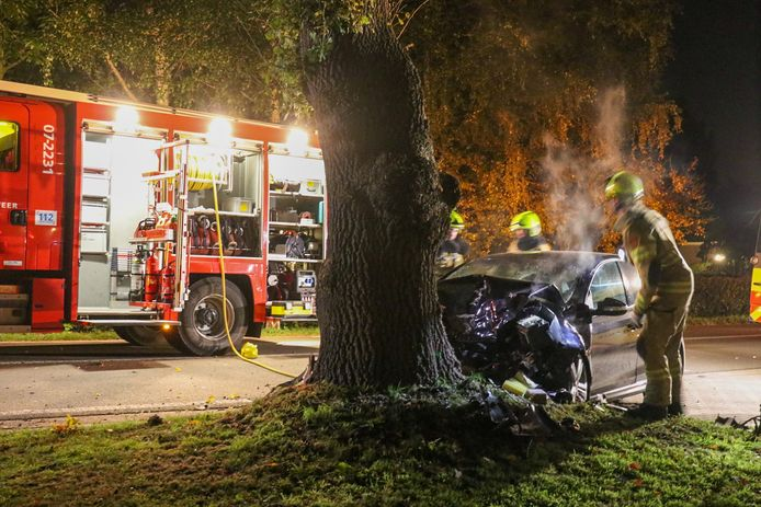 De automobilist raakte gewond na een botsing tegen een boom op de Lage Valkseweg in Wekerom.