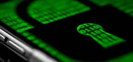 'Tientallen websites van de overheid kwetsbaar voor hackaanval'