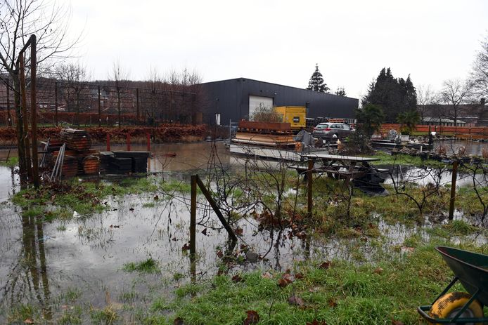 De beek naast de E314 is verstopt met hakselhout, waardoor de tuin van Gerry Vandenberghen al twee jaar onder water staat.