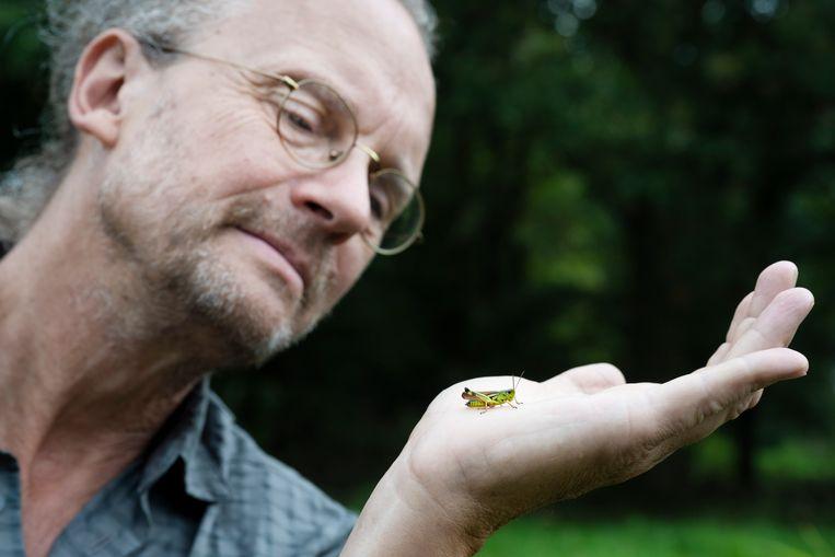 Baudewijn Odé is plantenonderzoeker maar raakte steeds meer in de ban van de sprinkhaan. Hier heeft hij een exemplaar gevonden in het Westerveldse Bos aan de rand van Zwolle. Beeld Bram Petraeus