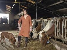 Holtense zorgboerderij Diessenplas biedt cliënten het echte boerenleven: 'Kippen voeren en werken in de moestuin'