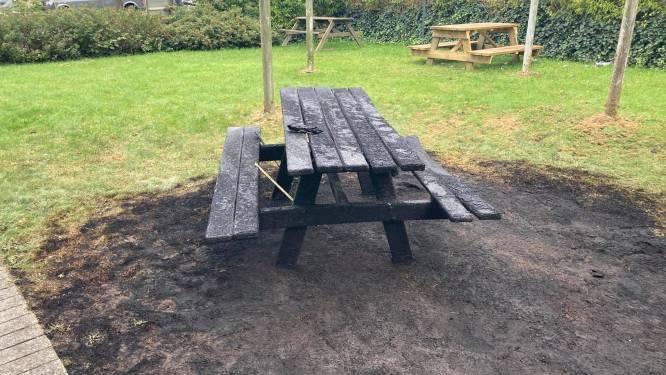 Jongeren steken picknicktafel in brand in de Bloemekenswijk en slaan op de vlucht