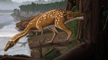 Bot van zeldzame dinosaurus zonder tanden opgegraven in Australië