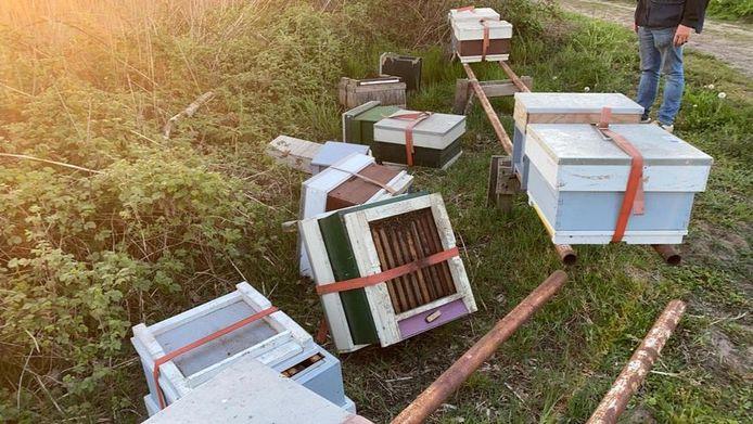 De omgegooide bijenkasten in Mariaheide.