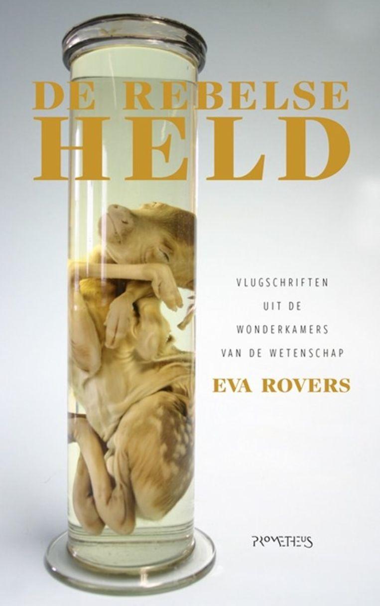 Eva Rovers: De rebelse held.  Prometheus; € 19,99 Beeld