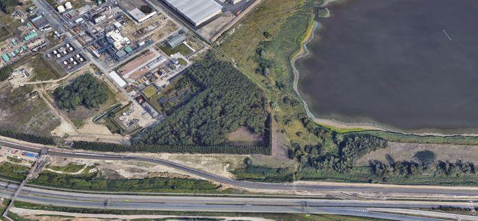 Ook op satellietbeeld is de bomenrij met populieren tussen 3M en de E34 en Blokkersdijk goed te zien.