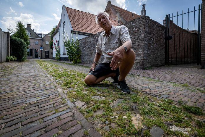 Jan Wester bij een van de straatjes in Vollenhove die overwoekerd is door onkruid.