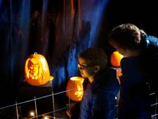 Pompoendagen moeten Museum Klok & Peel in Asten topmaand bezorgen