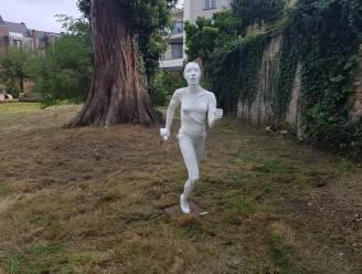 """Toerisme Dendermonde herneemt Jardins d'Amis: """"Pareltjes van tuinen te bezoeken"""""""