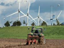 Windpark Wijchen A50: Provincie wil windmolens 'erdoor drukken'