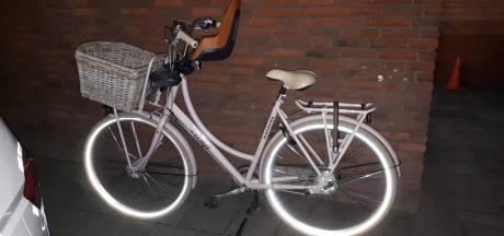 Gestolen fiets aangetroffen in Zwolle met dieven, eigenaar gezocht