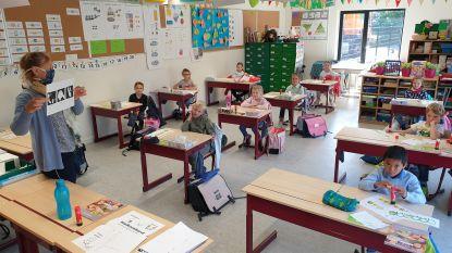 """De Klimboom start met alleen eerste leerjaar: """"Zo kunnen ze aan regels wennen in veilige omgeving"""""""