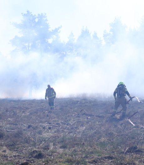 Waarom de brandweer nu al heide moet blussen op de Veluwe, ondanks maanden met regen