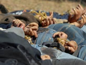 Vijf in stukken gehakte lijken ontdekt in Mexico