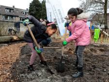 Gorcumse scholieren planten het eerste minibos in de stad
