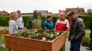 Senioren leren tuinieren in bakken