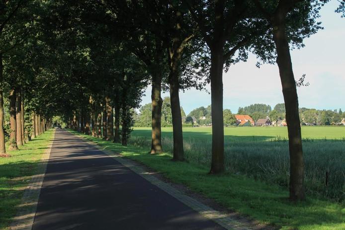 De Koolhof in Berlicum.