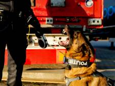 Politiehond Enzo en helikopter speuren vergeefs naar inbrekers transportbedrijf
