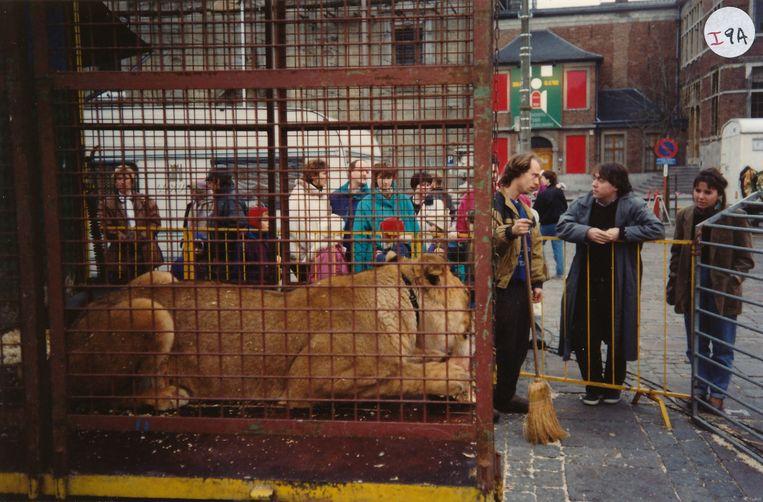 2003. Lancering van een campagne voor het verbod op circussen met wilde dieren.   Beeld rv