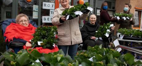 Elke zorgcentrumbewoner krijgt een lenteplantje van de rotary: 'Om ze een beetje op te fleuren'