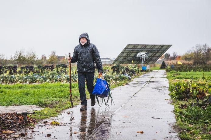 Roland Kerckhof uit Wachtebeke maakt de handen vuil voor zijn groenten.