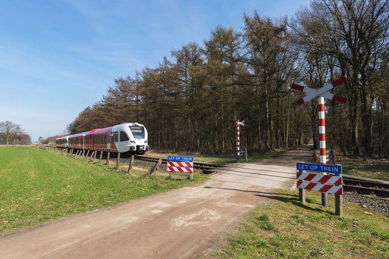 Onbewaakte snelwegovergang in Nederland. Beeld Shutterstock / Tonko Oosterink