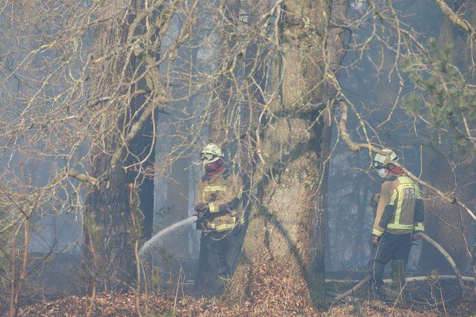 Brandweermannen aan het werk op het militair domein Groot Schietveld.