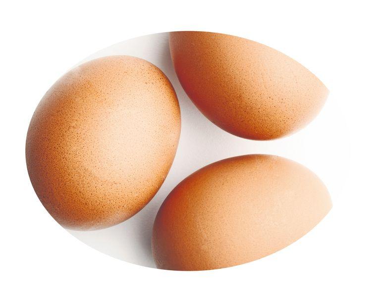 Wat was er eerder? De kip of het ei? Beeld Shutterstock