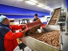 Alle garnalen even groot met de nieuwe Stellendamse sorteermachine