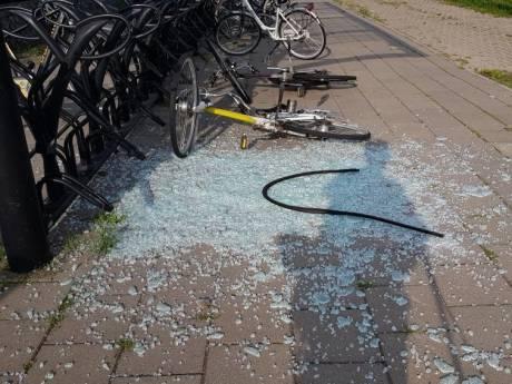Vernielers station Arnemuiden hebben kans gehad; politie geeft nu herkenbare beelden vrij