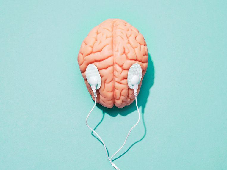 Neurobioloog Floris de Lange: 'Dingen die nieuwe inzichten brengen, zijn goed voor de hersenen.' Beeld Getty Images/Science Photo Libra