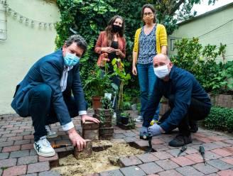 """Antwerpen lanceert als eerste in Vlaanderen de Klimaatpremie: """"Wie tuin vergroent, krijgt tot 30.000 euro"""""""
