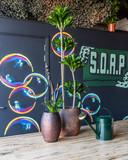 Bij S.O.A.P. komen kunst, mindset en leefstijl samen.