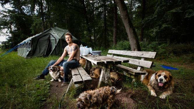 Barre winter dreigt voor rondzwervende Victor en zijn 9 honden: 'Overal weggejaagd, ik ben op'