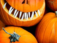 Ouders protesteren tegen schrappen Halloween: 'We zeggen tegen criminelen: jullie hebben gewonnen'
